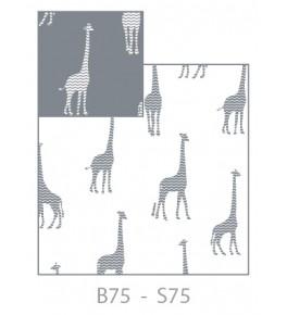 Perna Giraf, Gri